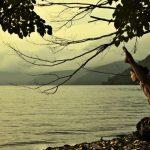 更科有哉先生より Ashtanga Yoga – Asana (ポーズ)とAsanaをつなぐVinyasa (ビンヤサ )